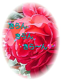 050524_094101001001.jpg