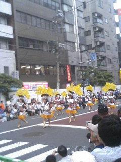 今日の・・・サンバカーニバル